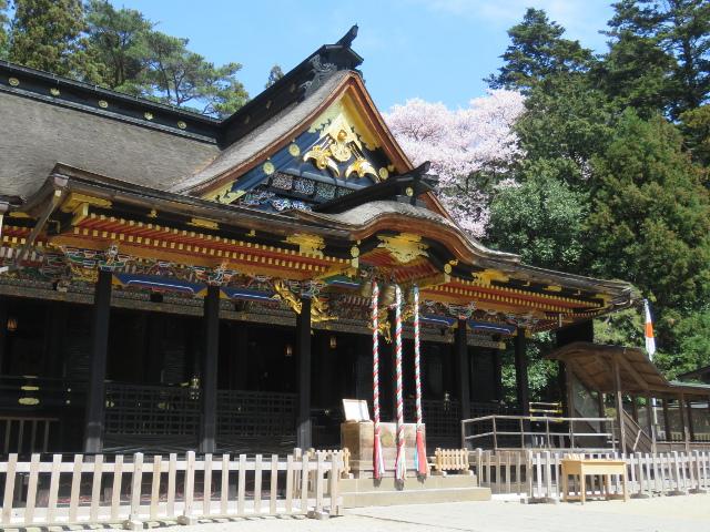 桜咲く頃の大崎八幡宮