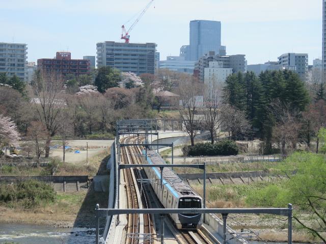 広瀬川を渡る地下鉄が見える