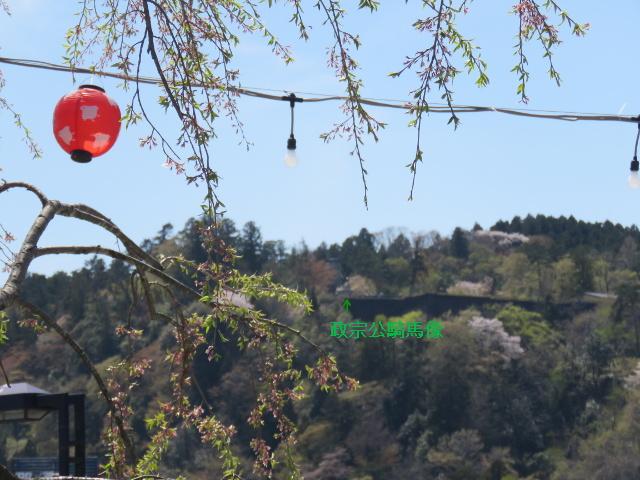 愛姫桜と伊達政宗騎馬像
