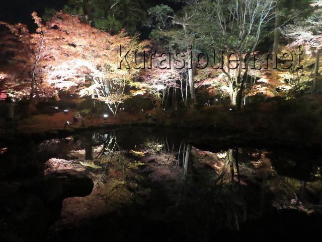 松島円通院の紅葉ライトアップ(心字の池)