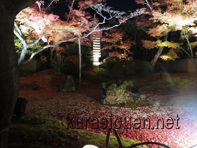 松島円通院の紅葉ライトアップ(石庭1)