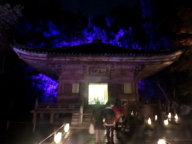 松島円通院の紅葉ライトアップ(三慧殿3)