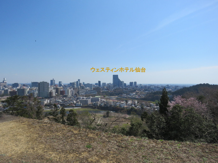 青葉城址から仙台繁華街を望む