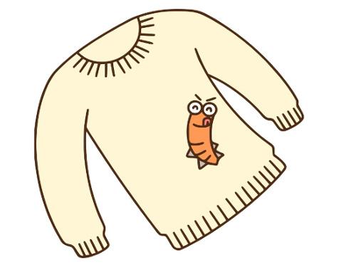 衣替えで圧縮袋には防虫剤を入れるな!