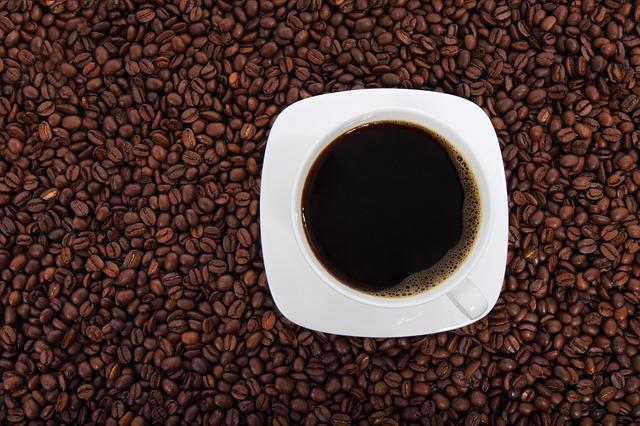 コーヒーがハダニ駆除に効く!