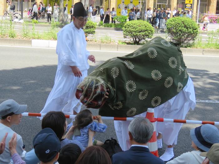 青葉神社神輿渡御06
