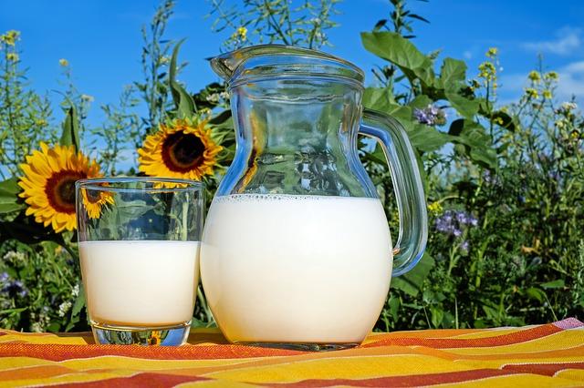 熱中 症 対策 牛乳 いつ 飲む