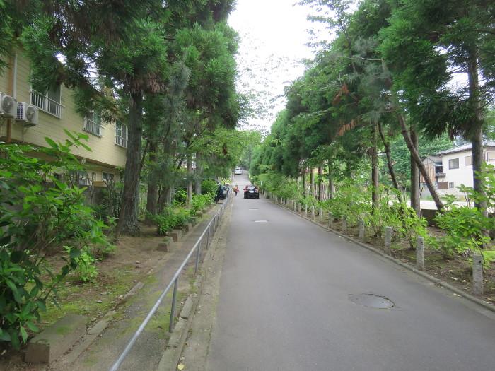 仙台のあじさい寺資福寺19