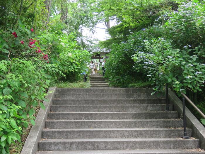仙台のあじさい寺資福寺4