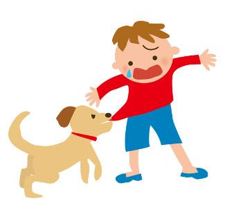 犬が袖を噛むのは?