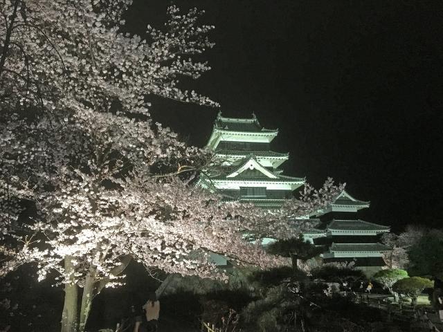 長野松本城夜景