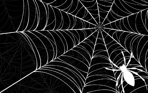 クモの仲間はサソリ・カブトガニ